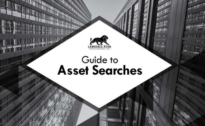 how a national asset search works