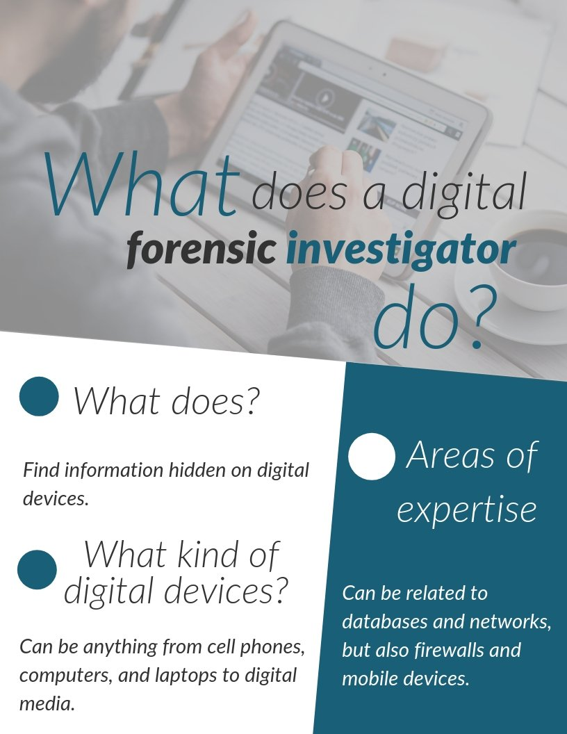 What does a digital forensic investigator do?